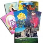 Postal Card2