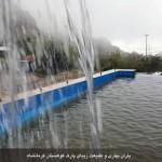 photo-shahreman-0126b