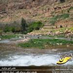 photo-shahreman_970128-01