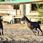 photo-shahreman_970401_04