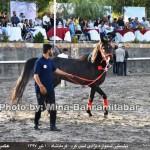 photo-shahreman_970401_05