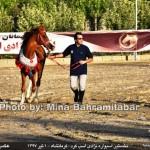 photo-shahreman_970401_23