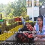photo-shahreman_970619-03