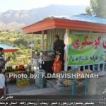 photo-shahreman_970619-06