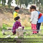 photo-shahreman_970826_05