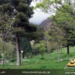 photo-shahreman-0212c